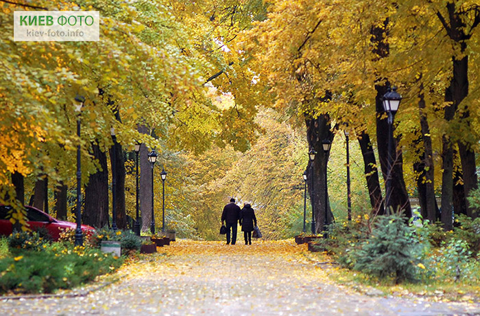 Міський сад в Києві