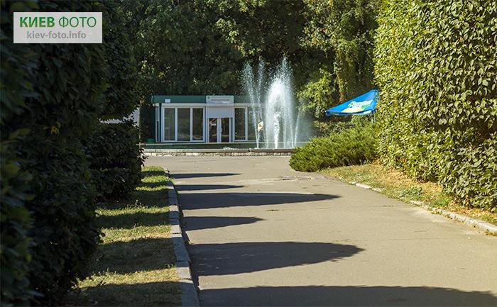 Фонтан в ботанічному саду ім. М. Гришка