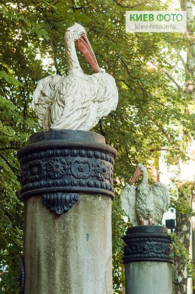 Фонтан з пеліканами (київські пелікани)